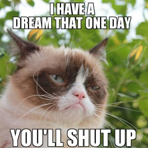 Funny Grumpy Cat Meme I Have Dream That e Day You Will Shut Up Image