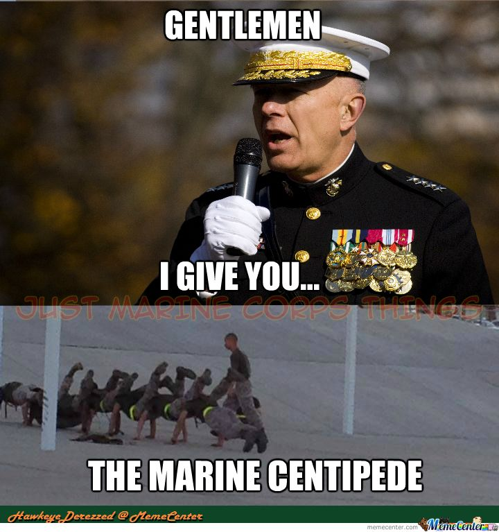 Grasp the Elegant Hilarious Funny Animal Memes Usmc