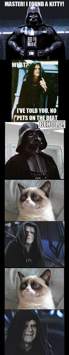 funny star wars grumpy cat Grumpy Kitty Grump Cat Grumpy Cat Humor