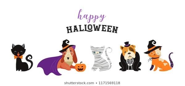 Happy Halloween cats and dogs in monsters costumes Halloween party Vector illustration