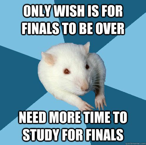 only wish is for finals to be over need more time to study for finals