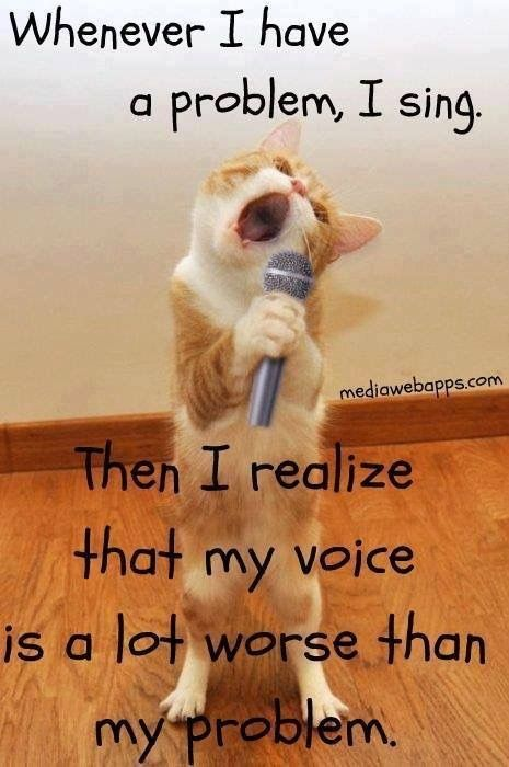 This sounds exactly what my granddaughter says about herself when she sings Funny Cats Funny