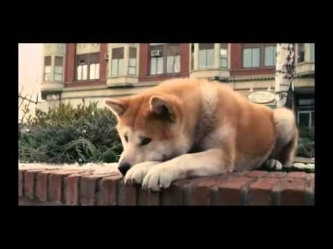 Hachiko A Dog s Story Music Video From Movie