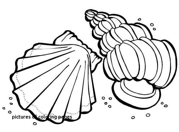 Coloring Pages Animals Awesome Image Elephant Coloring Pages Best Color Page New Children Colouring 0d