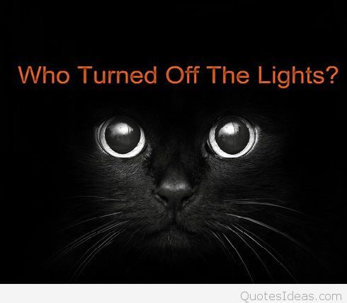 Funny Halloween cat with saying wallpaper