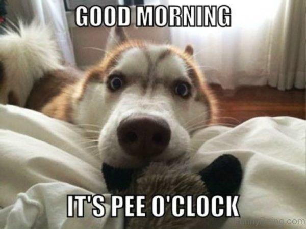 It s Pee O Clock