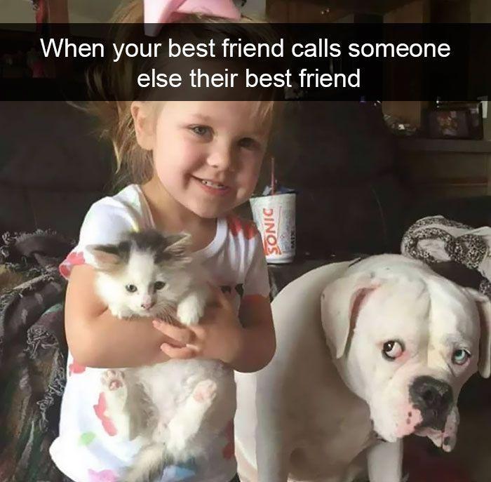 10 Hilarious Animal Snapchats Guaranteed To Make You Laugh Out Loud