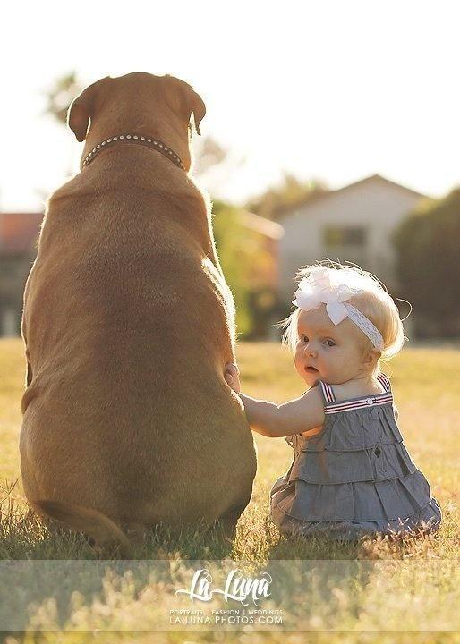 Big dog big hearts bigdog
