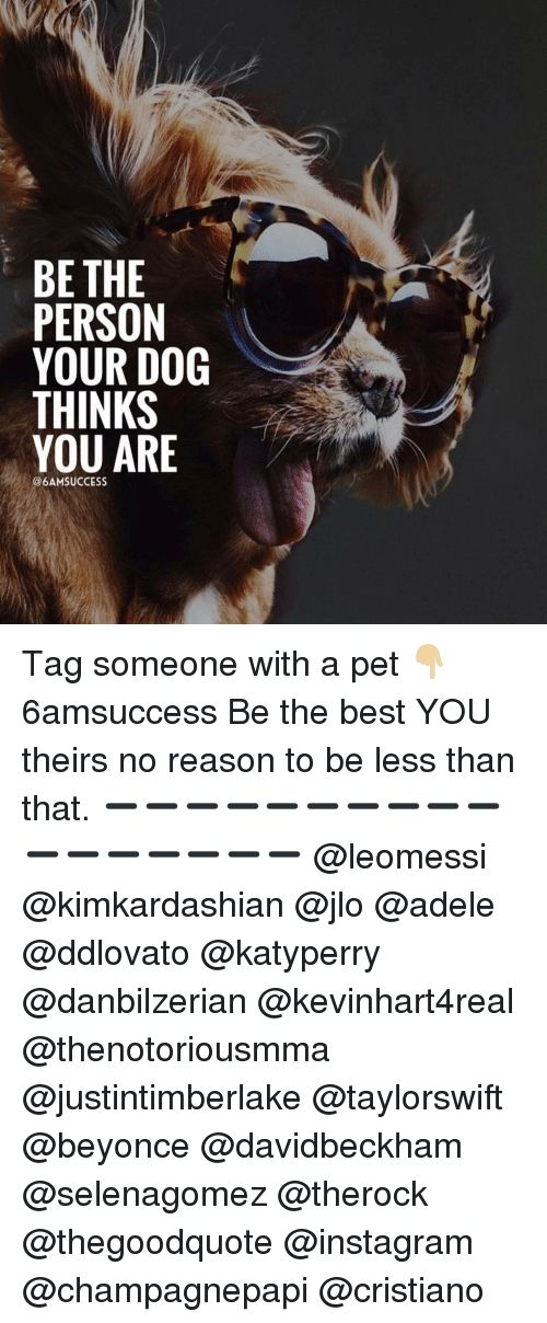 Adele Beyonce and JLo BE THE PERSON YOUR DOG THINKS YOU ARE