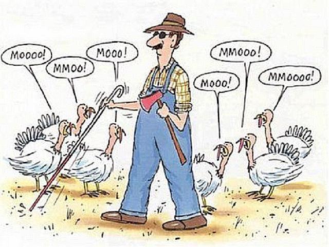 Tricky Turkeys