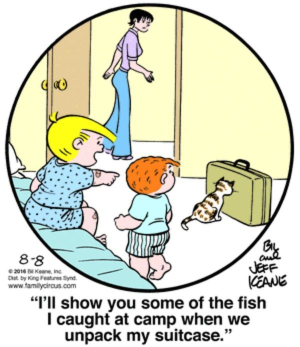 Family Circus for 8 8 2016 Funny ics Funny Cartoons Cat ics