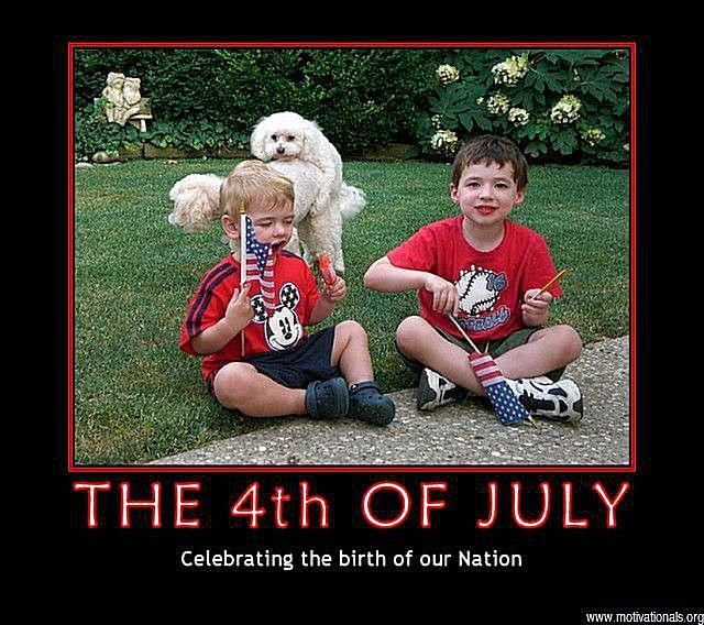 Dogs photo a 4th of July photo of two boys