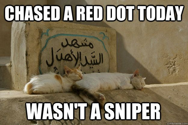Chased a red dot today Wasn t a sniper