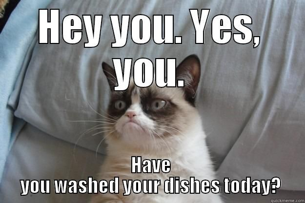 HAVE YOU WASHED YOUR DISHES TODAY Grumpy Cat