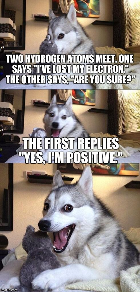 it s pretty hilarious and punny We have to admit this Lord of the Rings meme is pretty much the equivalent of another meme involving a certain Husky