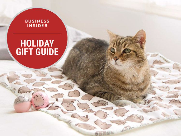 20 cat approved ts for your fancy feline