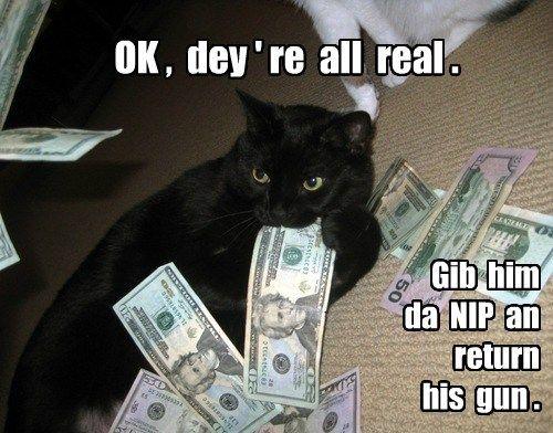s cash nip Cats black cat