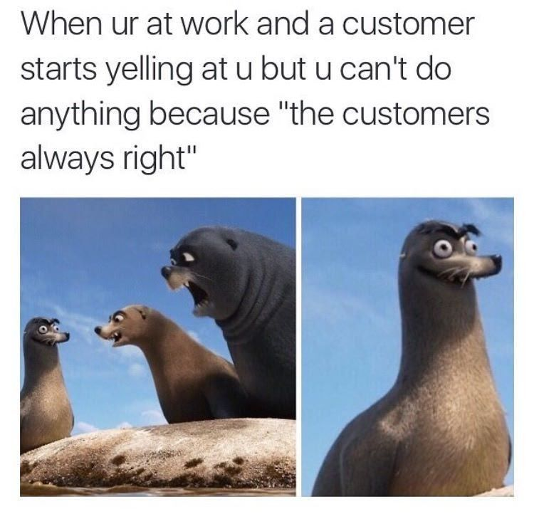 A Meme Is A Wish Your Heart Makes Imgur Funny Pinterestseal Meme