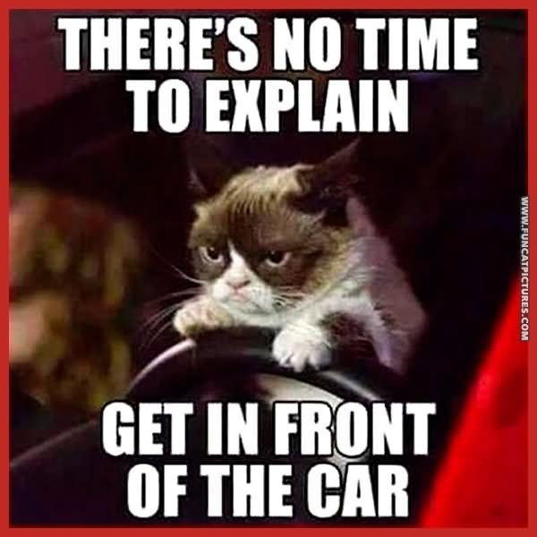 There s No Time To Explain Funny Cat Meme