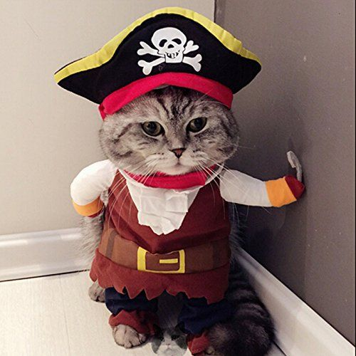 Idepet Funny Pet Clothes Pirate Dog Cat Costume Suit Corsair Dressing up Party Apparel Clothing for