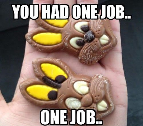 funny chocolate rabbit you had one job