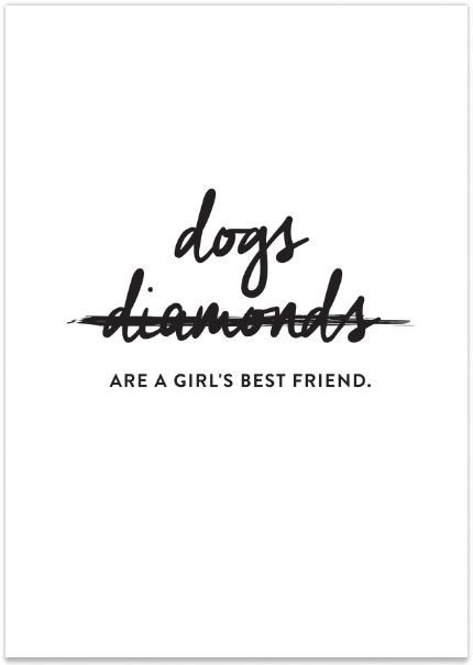 Dogs Are a Girl s Best Friend SOLD OUT
