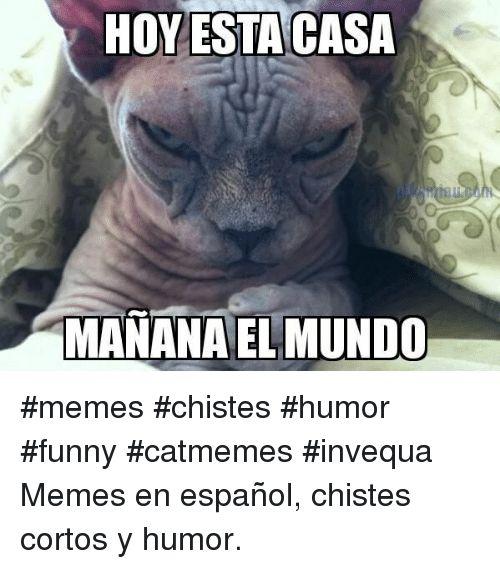 Funny Memes and Espanol HOY ESTA CASA MANANA EL MUNDO memes
