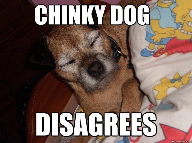 Chinky Dog disagrees