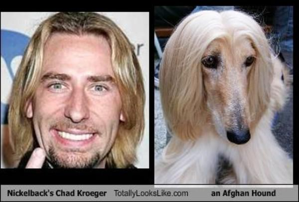 13 Chad Kroeger totally looks like part 1 … Nickelback Meme