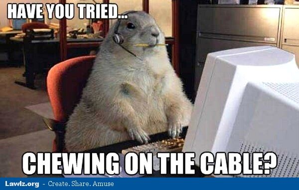 gopher tech support have you tried chewing on the cable puter meme