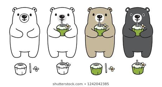 Bear vector polar bear coconut water drink juice summer cartoon character icon logo doodle illustration