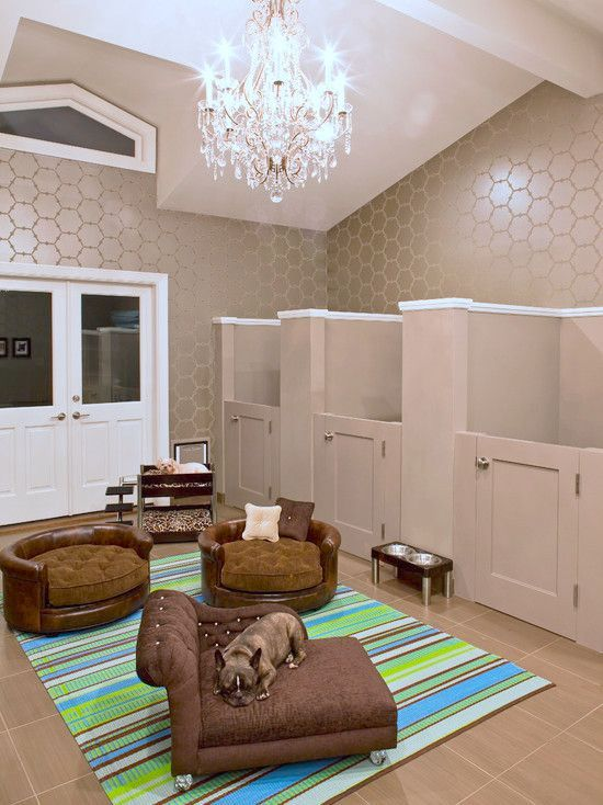 It s a dog room Looks like i m going to have that in my future house