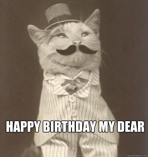happy birthday my Dear happy birthday my Dear Original Business Cat