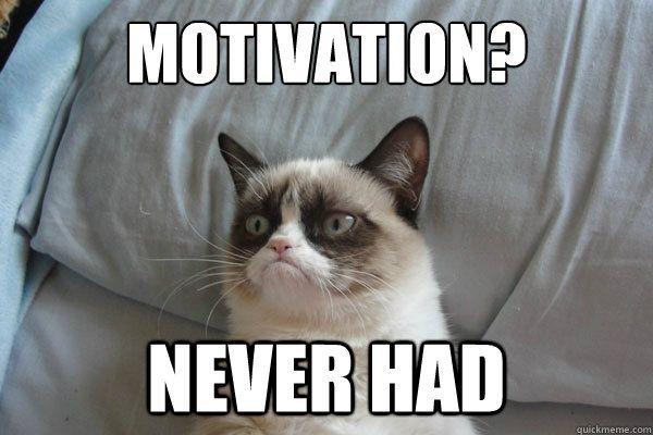Motivation Never had Motivation Never had Grumpy Cat 2