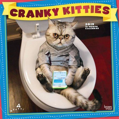 Avanti Cranky Kitties Wall Calendar Funny Cats by Calendars Walmart