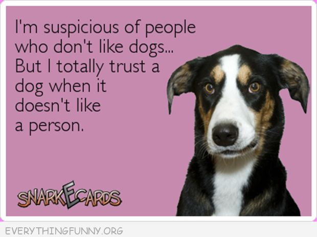 funny quote suspicious people dogs