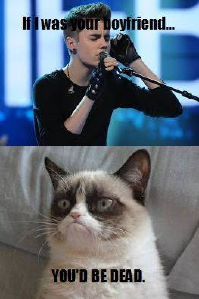 See the Fresh Funny Grumpy Cat song Memes