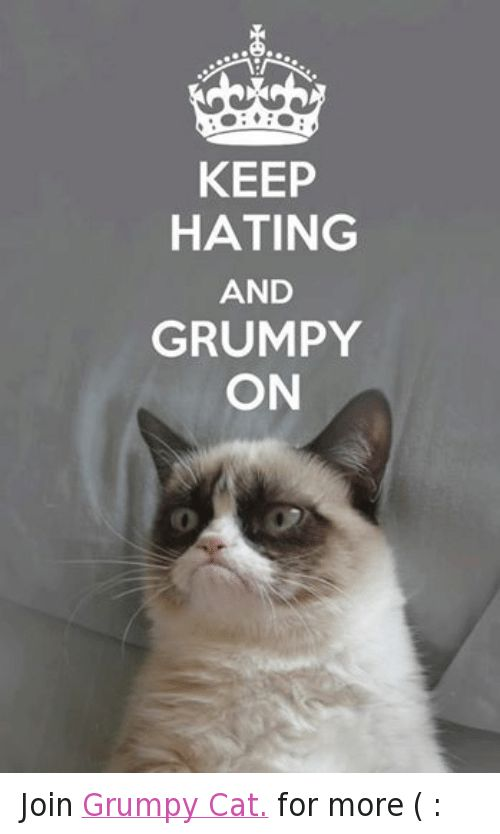 funny meme · Cats Grumpy Cat and Cat KEEP HATING AND GRUMPY ON Join Grumpy Cat