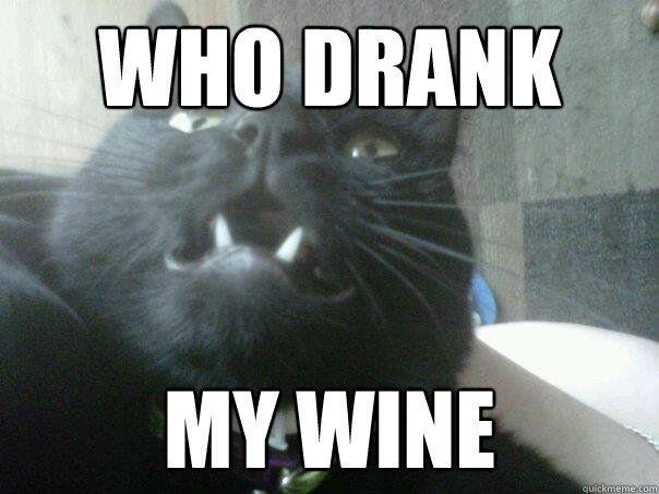 WHO DRANK MY WINE WINE CAT