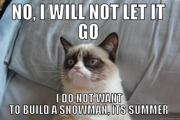 See the Inspirational Funny Frozen Grumpy Cat Pictures