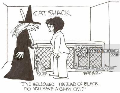Grey Cats Cartoons and ics