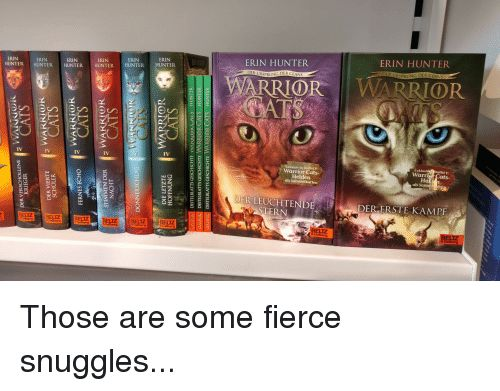 See the Lovely Warrior Cat Funny Memes