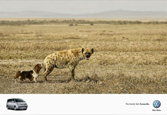 Funny Volkswagen Caravelle advert Dog and hyena