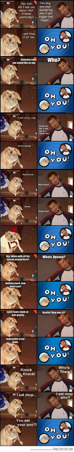 funny oh you meme dog looking up Really Funny