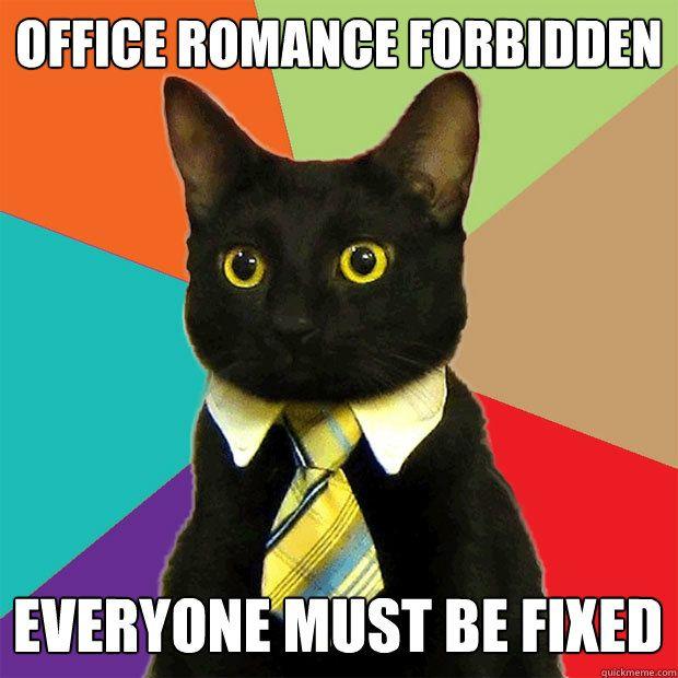 fice Romance Forbidden Cat Meme