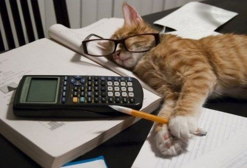 Accountant Humor Good Jokes Fun Jokes Rem Sleep Can t