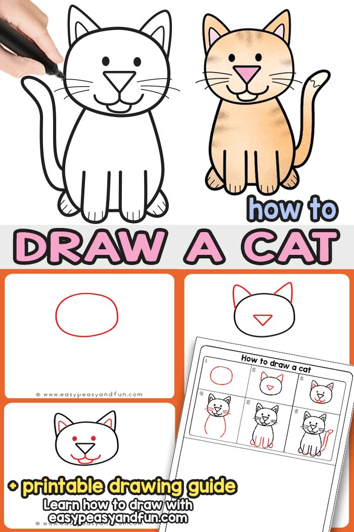 How to Draw a Cat Step by Step Tutorial With these simple drawing instructions you