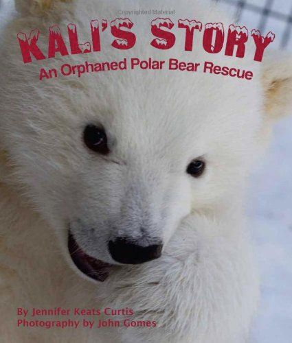 Kali s Story An Orphaned Polar Bear Rescue by Jennifer Keats Curtis