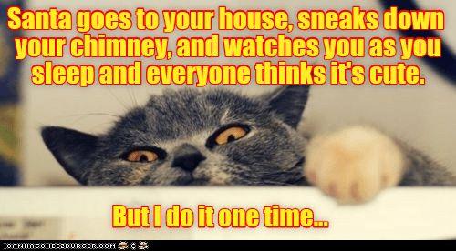 See the Prodigious Funny Cat Memes Sleepy
