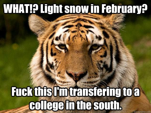 WHAT Light snow in February Fuck this I m transfering to a college in the south